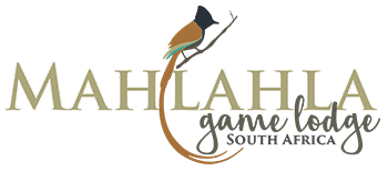 Mahlahla Game Lodge Logo Image